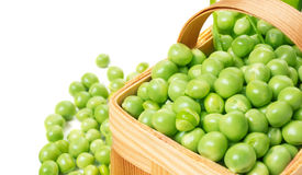 Peas in a basket Stock Photography
