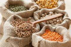 Peas, chick peas, red lentils, wheat and green Stock Image