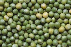 Peas Stock Photography