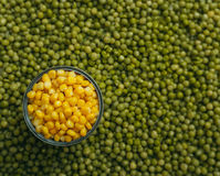Peas corn background Stock Photo