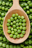 Peas. Fresh peas on wooden spoon Royalty Free Stock Photo