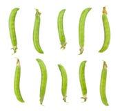 Peas. Isolated on white background royalty free stock photo