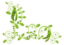 Peas with leafs  Royalty Free Stock Photos