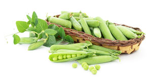 Peas with leaves. Stock Image