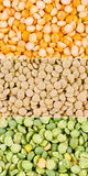 Peas with lentil. Green and yellow peas with lentil Royalty Free Stock Photo