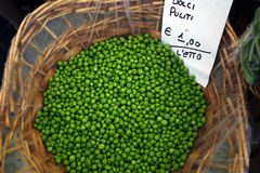 Peas at Market. This is a shot of freshly-shelled peas on display in Rome's open-air market in Campo dei'Fiori stock photos