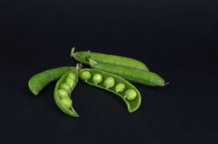 Peas in a pod. On the black background stock images