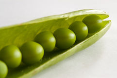 Peas in pod Royalty Free Stock Image