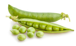 Peas in a pod Stock Image