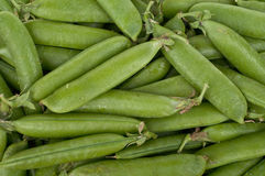 Peas pods Stock Photography