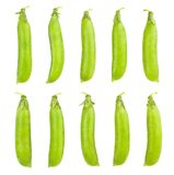 Peas pods. Peas pod path isolated on wnite stock photography