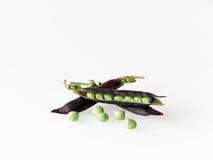 Peas in purple pod (kapucijners) Stock Images