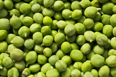 Peas. Rolled in at the plate Stock Photography