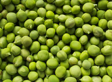 Peas. Rolled in at the plate Royalty Free Stock Photos