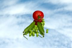 Peas and tomatoes Stock Images