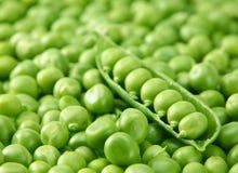 Peas vegetable Royalty Free Stock Photo