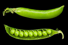 Peas vegetable closeup Royalty Free Stock Images