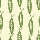Peas vegetable seamless pattern. Hand drawn vector Royalty Free Stock Photo