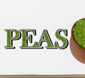 Peas Vegetables Isolated. royalty free stock images