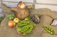 Peas and vegetables in an old cloth Royalty Free Stock Photo