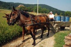 Peasant carrying barrels on a horse driven cart. BRATCA POIANA, ROMANIA - CIRCA JULY 2010: Peasant carrying barrels on a horse driven cart, through the hills of Stock Photography
