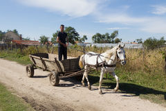 Peasant in cart Royalty Free Stock Image