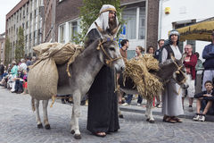 Peasant couple with their donkeys Stock Image
