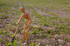 Peasant in a field with shovel Royalty Free Stock Photos