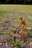 Peasant in a field with shovel Stock Photos