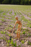 Peasant in a field with shovel Royalty Free Stock Photo