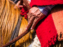 By peasant hands the reins of a horse fair Royalty Free Stock Photos