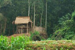 Peasant hut on the river bank. Laos Stock Images