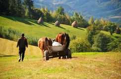 Peasant with an ox-driven cart. In a Romanian mountain village, during summer Stock Images