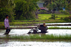 Peasant plow his paddy field Stock Photography