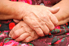 Peasant sunburnt old hands. Peasant sunburnt hands of an old woman royalty free stock photo