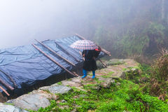 peasant walk on wet pathway over hut Stock Photography