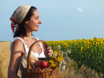 Peasant woman with basket of apples. Peasant woman eating apple and looking in sunflower field,photography stock image