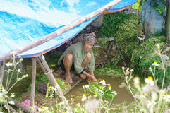 Peasant woman washing vegetables Royalty Free Stock Images