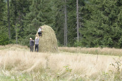 Peasants in field. Peasants bailing hay in field on sunny day Royalty Free Stock Photos