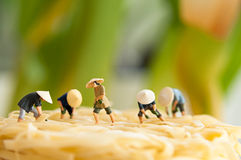 Peasants on noodle field Royalty Free Stock Photos