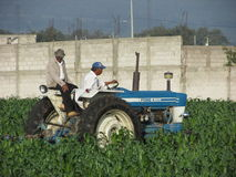 Peasants on tractor Royalty Free Stock Images