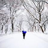 Peatón en Central Park, Nueva York en invierno Imagen de archivo