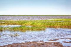Peat banks of river Kolyma Stock Images
