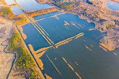 Peat bog covered with water in countryside. Forest along reservoir. Aerial landscape. Peat bog covered with water in the countryside. Forest along reservoir royalty free stock photo