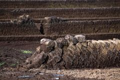 Peat extraction, turf blocks piled up to dry, industrial nature Royalty Free Stock Image