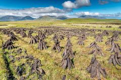 Peat field. Pyramids of peat drying in the sun of Connemara royalty free stock photography