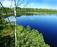 Peat lake in reservation Stock Photo