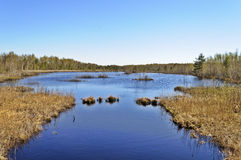 Peat lake in spring time Royalty Free Stock Image