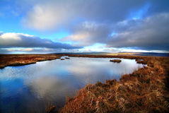 Peat lake Royalty Free Stock Image