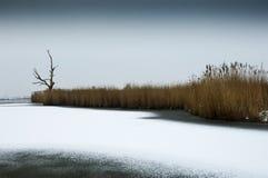 Dutch Landscape, Eempolder winter three stock photos